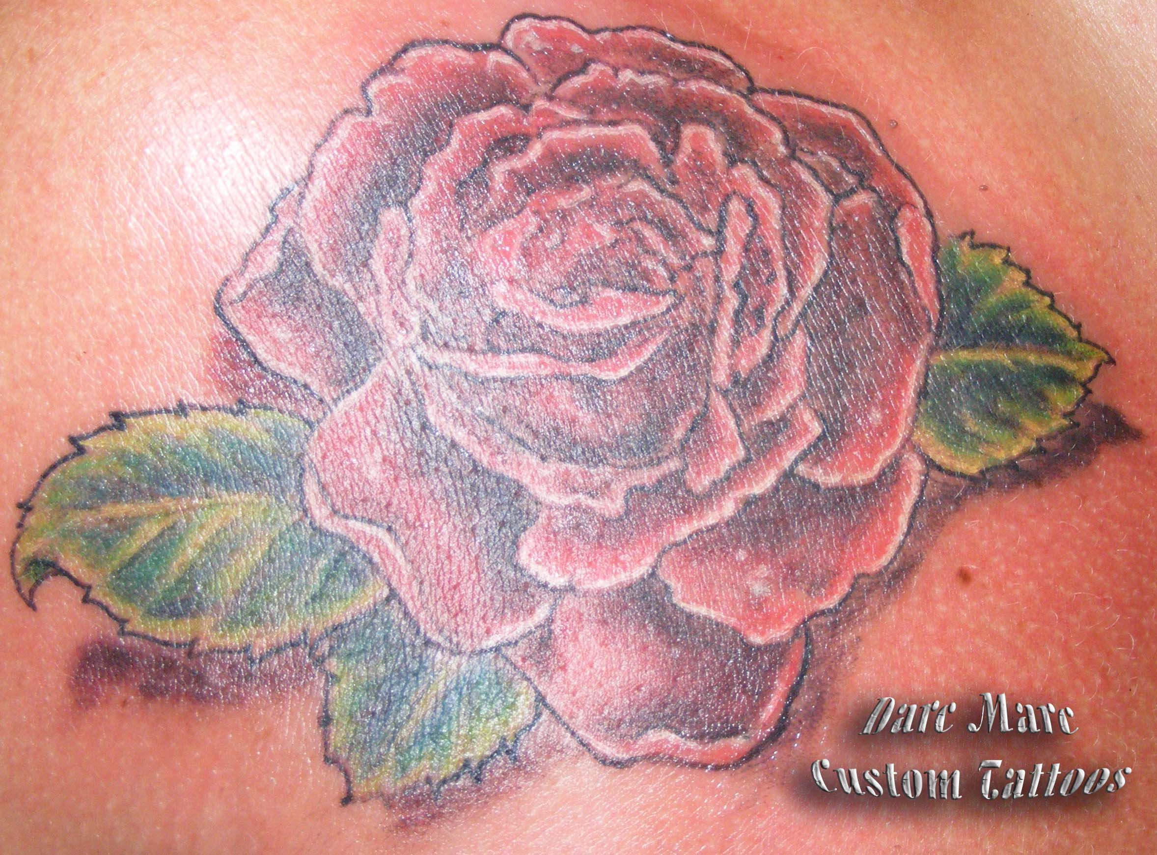 Image search more information on rose tattoo